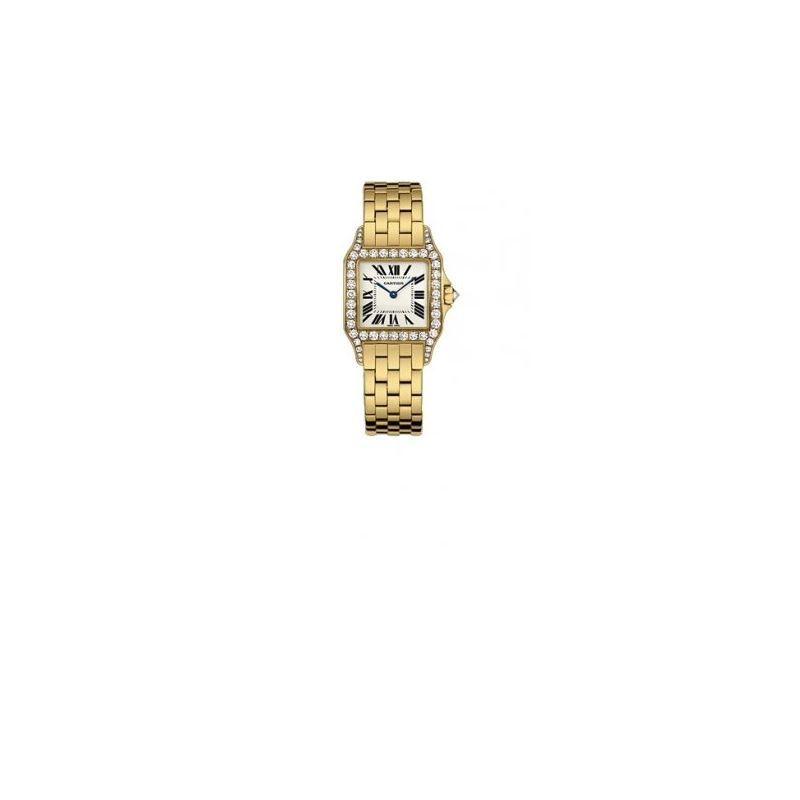 Cartier New Santos Series Unisex Watch WF9002Y7
