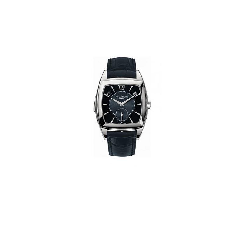 Patek Philippe Grand Complication Mens Watch 5033P