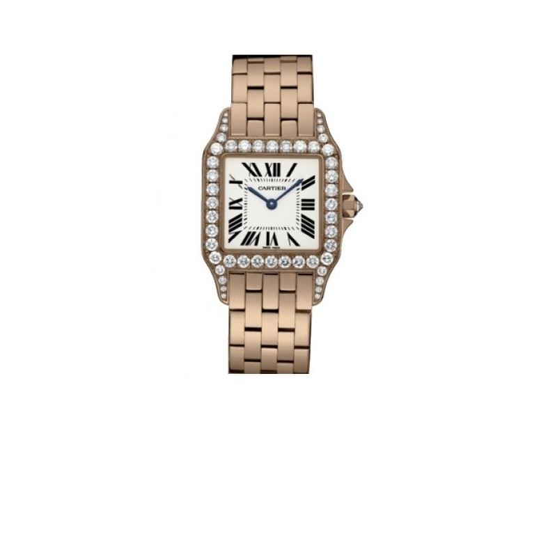 Cartier New Santos Series Unisex Watch WF9007Z8